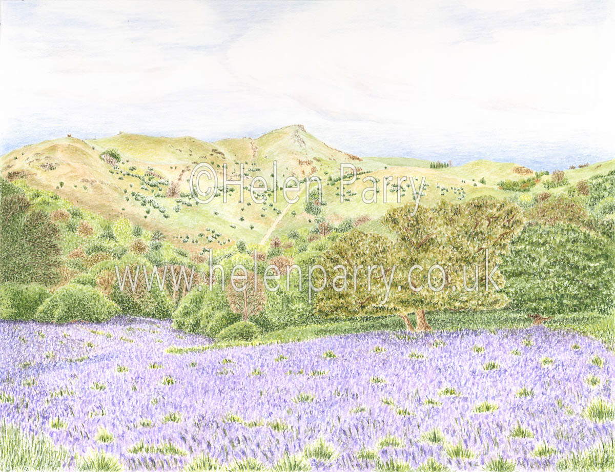 fine art print of caer caradoc with bluebells in Shropshire