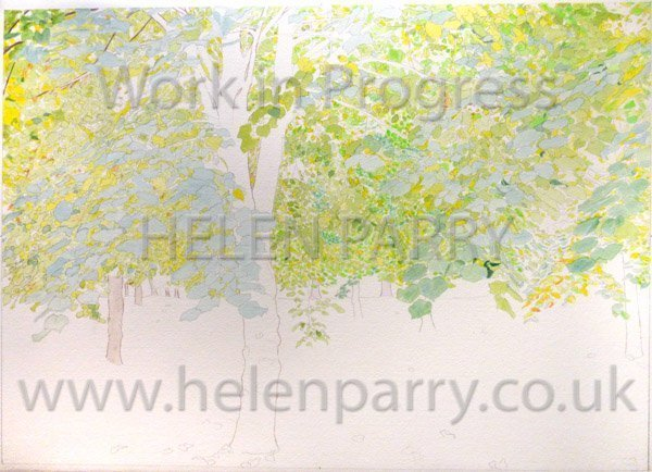 First stage Tree Canopy watercolour
