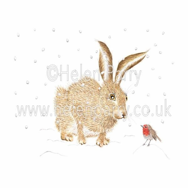 greeting card of hare greeting red robin in snow
