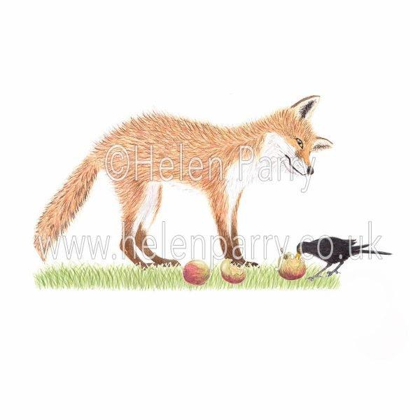 greeting card of a curious fox watching blackbird peck at an apple
