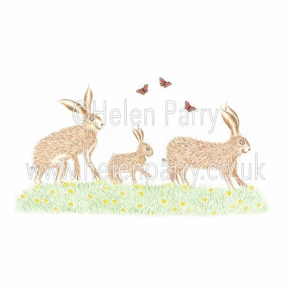 greeting card of family of hares on a day out