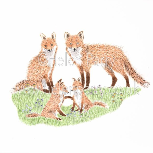 greeting card of fox family with fox cubs playing