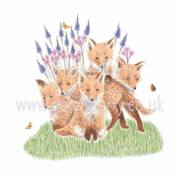 greeting card of fox cubs scouting out butterflies