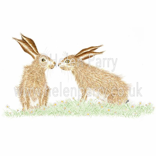 greeting card of two hares whispering together
