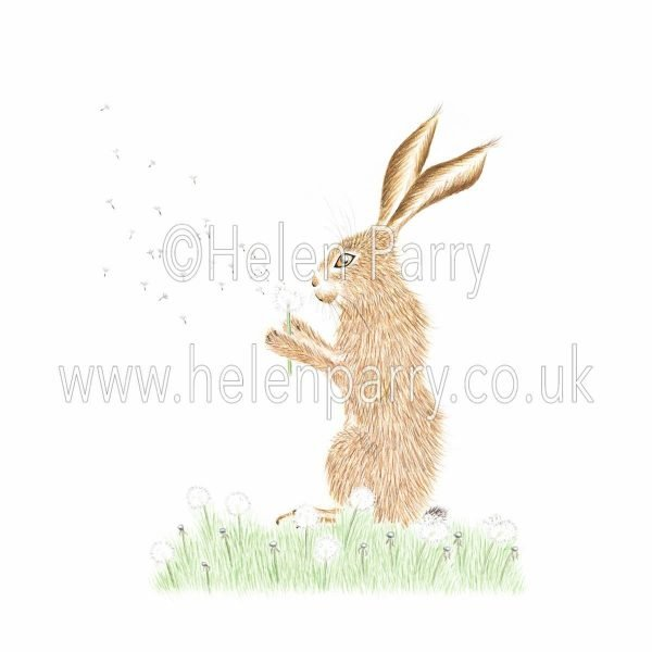 greeting card of hare blowing wishes with dandelion puff ball