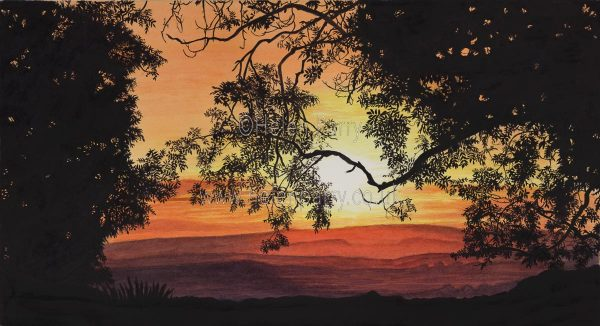 Sunset through the Trees by Watercolour Artist Helen Parry