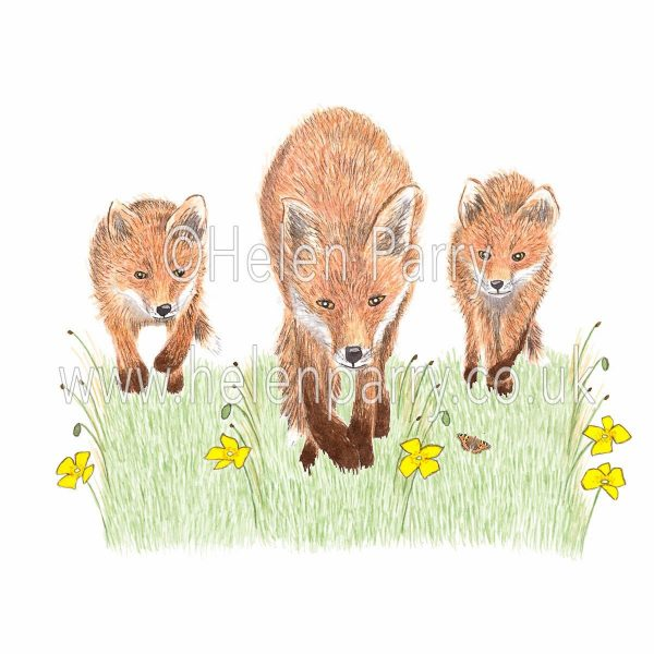 greeting card of fox cubs keeping up with running fox