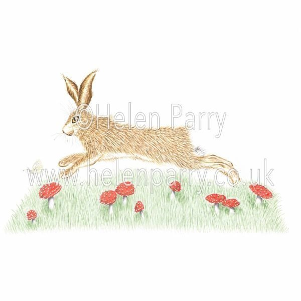 greeting card of hare jumping toadstools in leaps and bounds