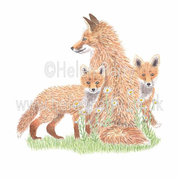 greeting card of fox on guard with two fox cubs