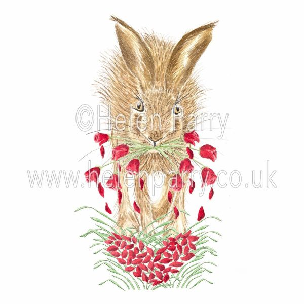 greeting card of hare with red roses in mouth and falling petals forming a heart shape