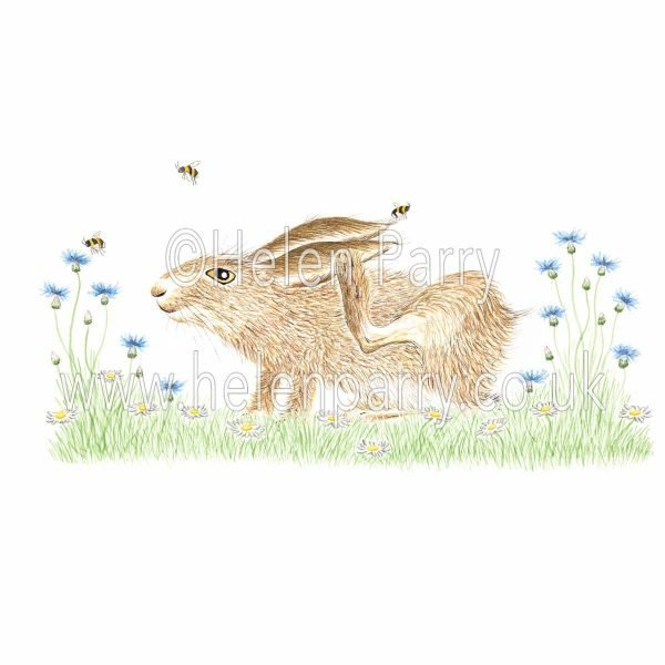 greeting card of hare scratching ear with paw