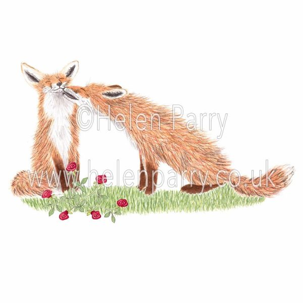 greeting card of fox nuzzling vixen amongst red roses