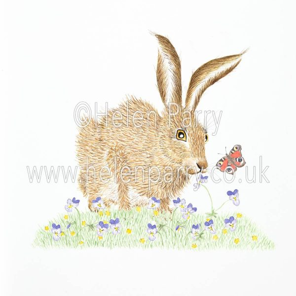 greeting card of hare sniffing viola flowers