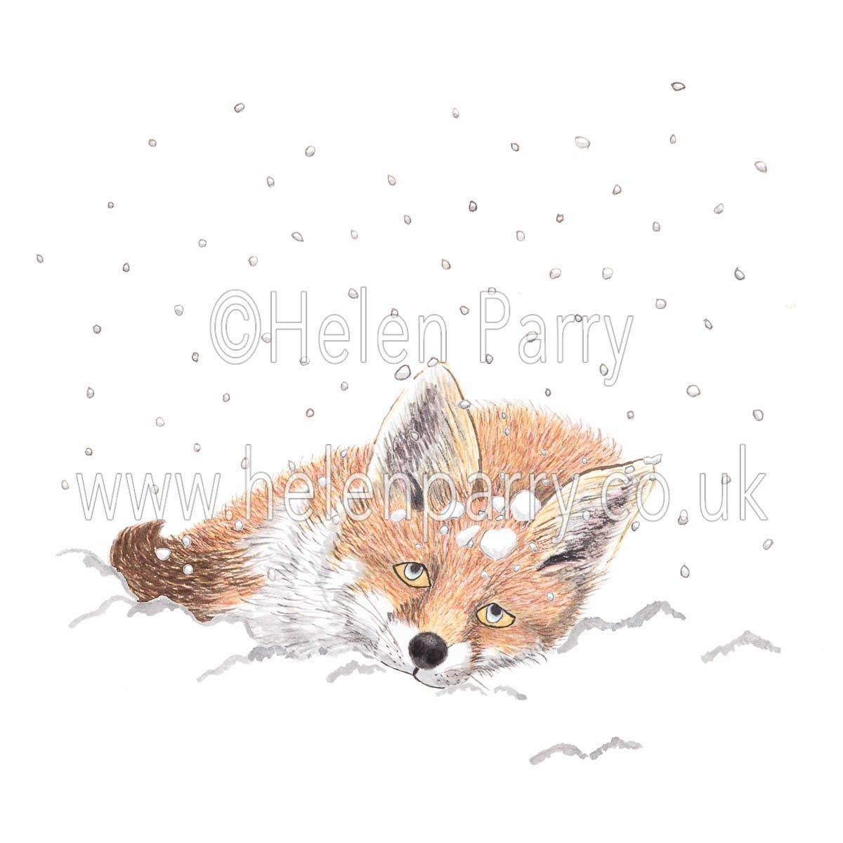 greeting card of fox in snow drifting to sleep