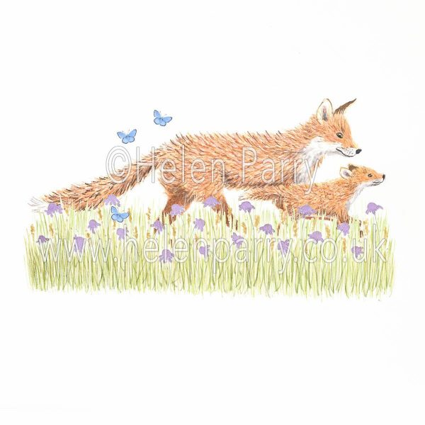 greeting card of fox and fox cub striding out in wild meadow