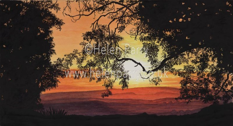 fine art print of sunset through silhouette of trees and leaves