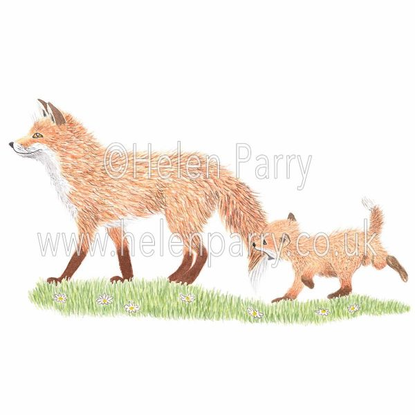 greeting card of fox cub holding onto fox tail to keep up