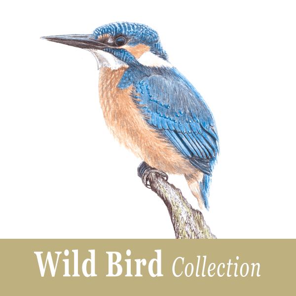 Wild Bird Collection