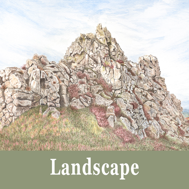 Landscape Commissions for a Watercolour Painting by Helen Parry