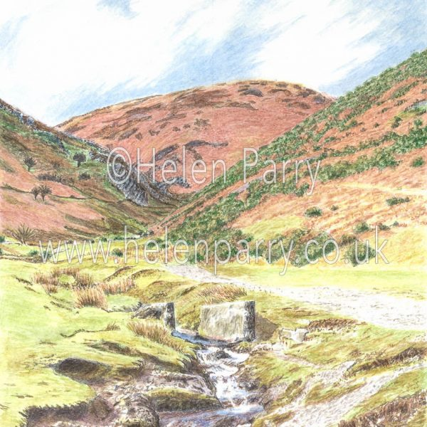 watercolour painting of Carding Mill Valley Shropshire