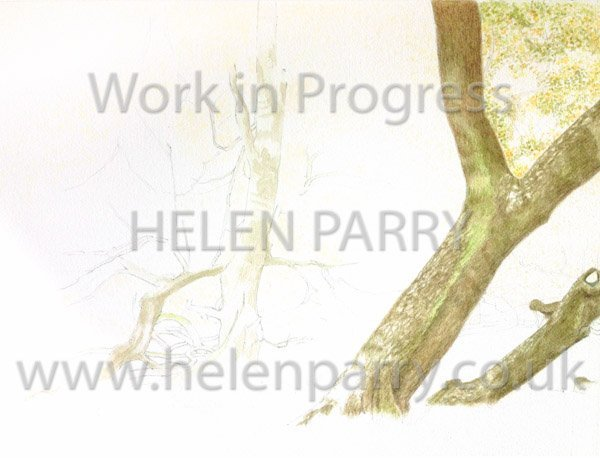 First stage Arley in Autumn watercolour