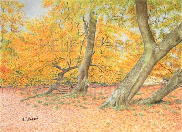 Arley in Autumn watercolour painting by Helen Parry