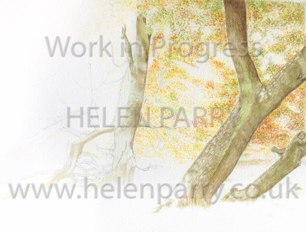 Second stage Arley in Autumn watercolour