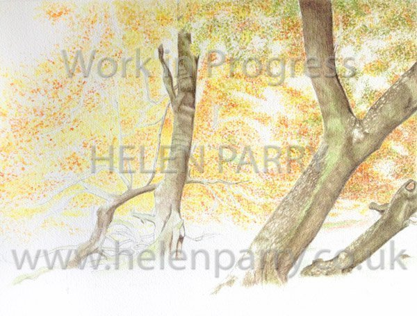Third stage Arley in Autumn watercolour