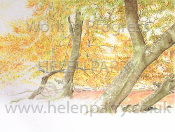 Fourth stage Arley in Autumn watercolour