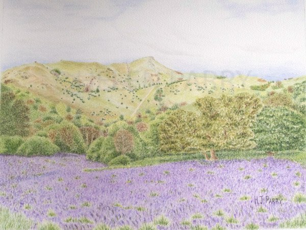 Caer Caradoc watercolour painting by Helen Parry