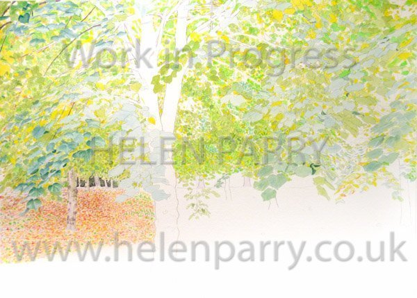 Second stage Tree Canopy watercolour
