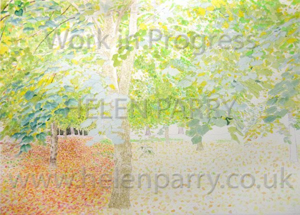 Fourth stage Tree Canopy watercolour