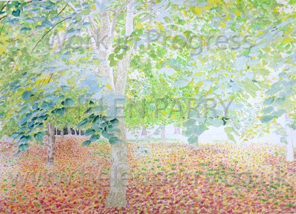 Fifth stage Tree Canopy watercolour