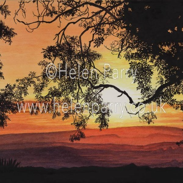 watercolour painting of sunset through silhouette of trees and leaves