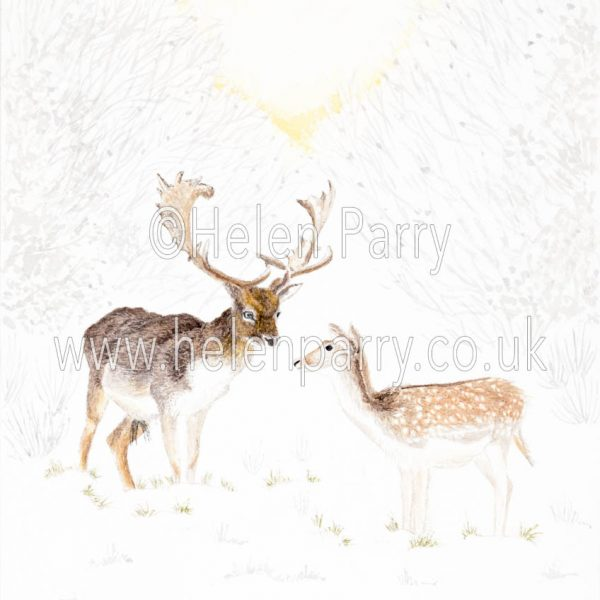 fine art print of fallow deer in snowy sunrise setting