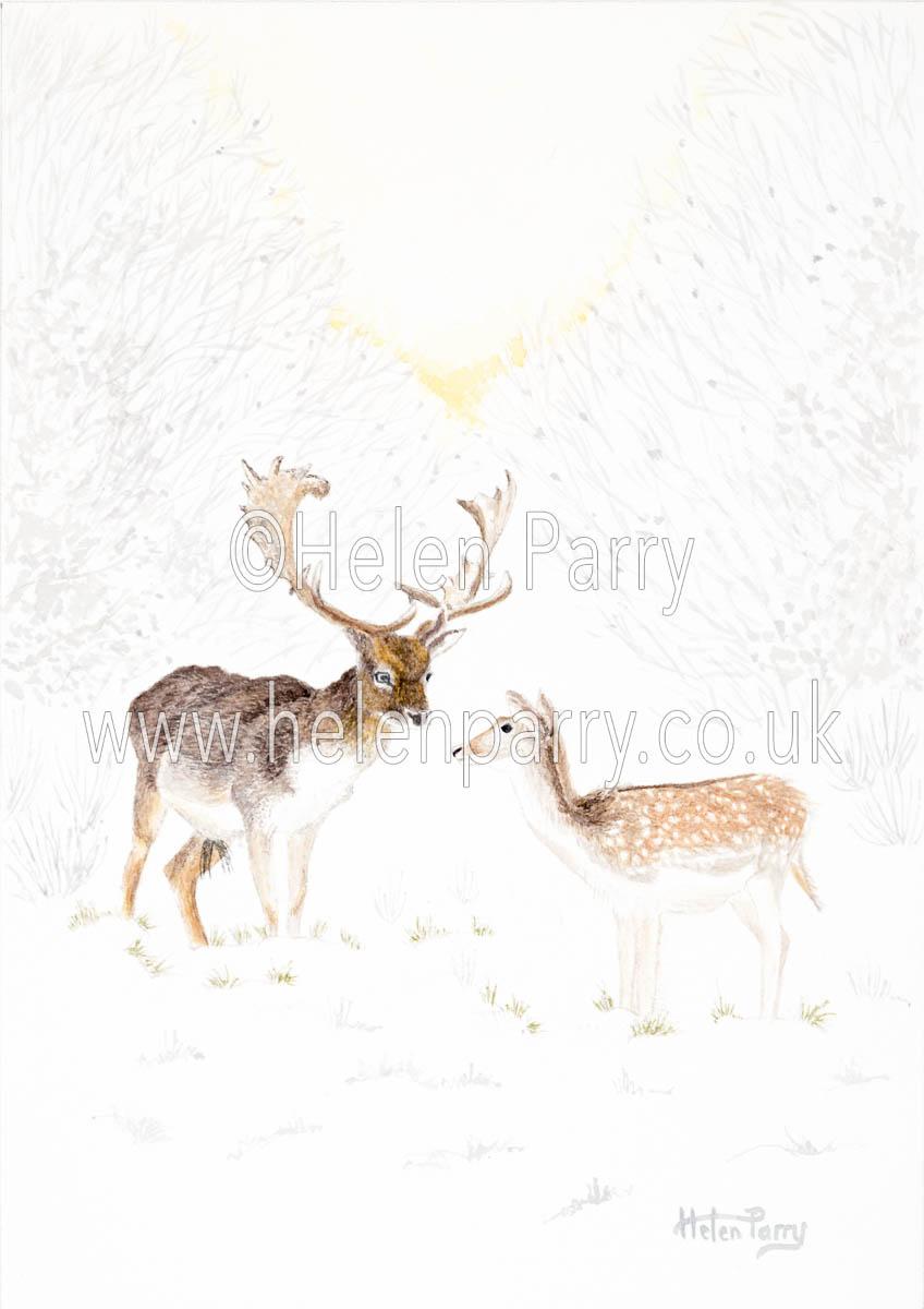 fine art print of fallow deer in snowy sunrise setting