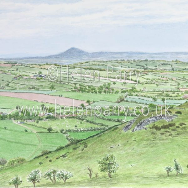 watercolour painting of wrekin hill on the horizon viewed from Hope Bowdler hill