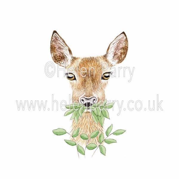 greeting card of doe deer chewing leaves