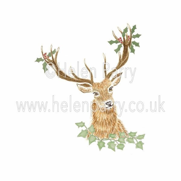 watercolour painting of red deer stag with holly and ivy in antlers