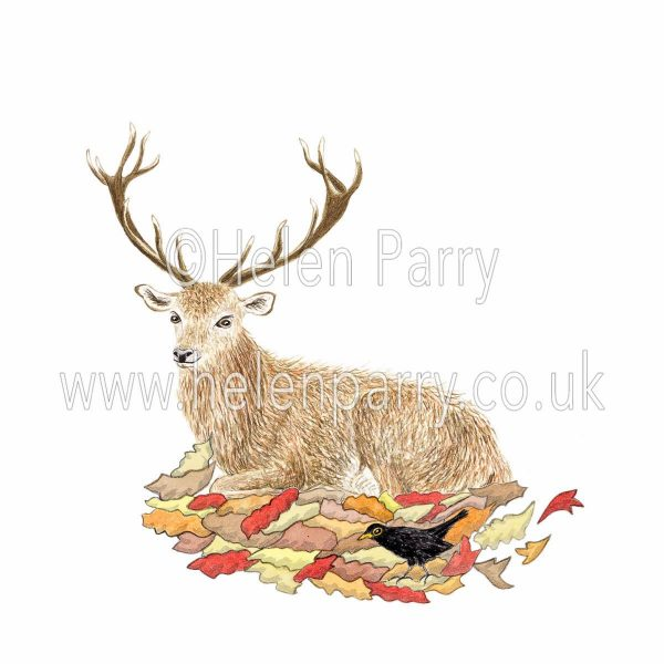 watercolour painting of red deer stag sitting by blackbird rustling the leaves