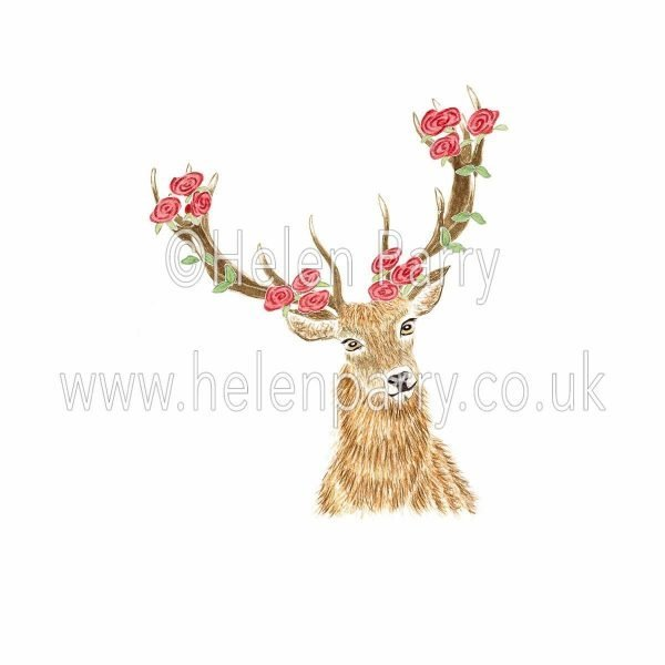 watercolour painting of red deer stag with red roses in antlers