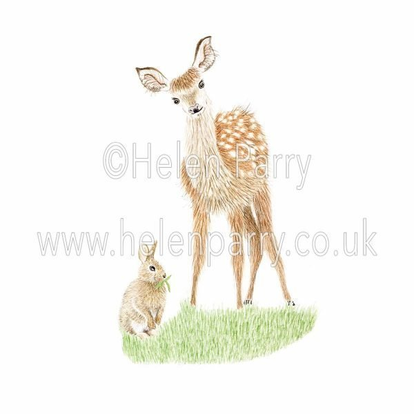 greeting card of fawn looking down at rabbit chewing grass