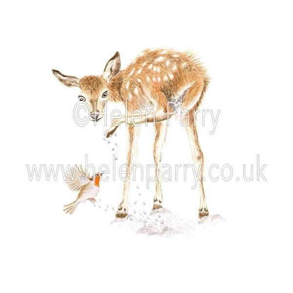 watercolour painting of fawn deer lifting hoof in snow and surprising a red robin