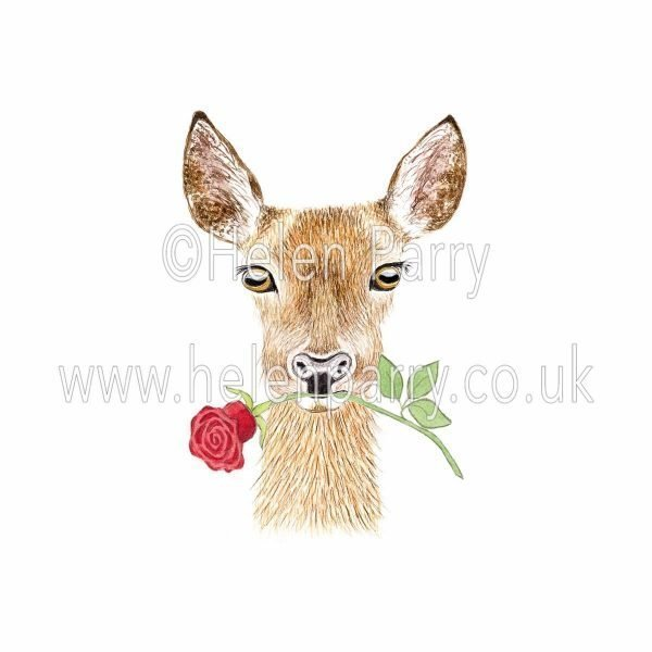 watercolour painting of doe deer with red rose in mouth