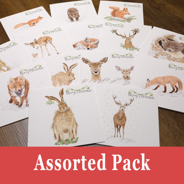 Assorted Cards Pack