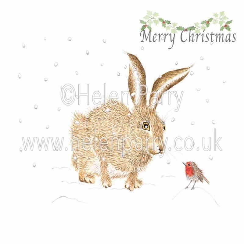 christmas card of hare greeting robin bird