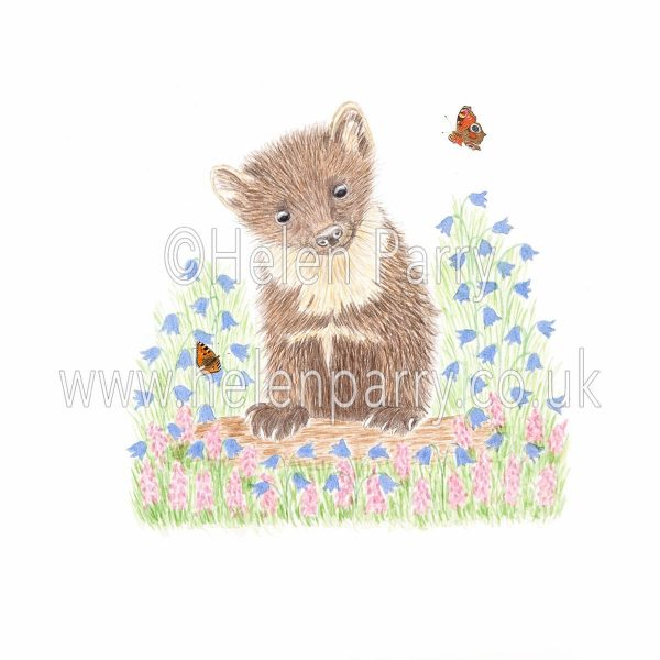 framed greeting card of fun-loving pine marten resting on log amongst harebells