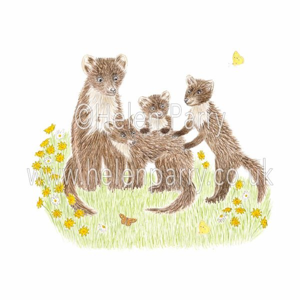 greeting card of playful pine martens with mother