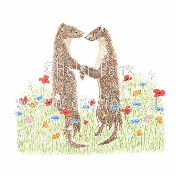 greeting card of pine marten couple side by side in wild meadow