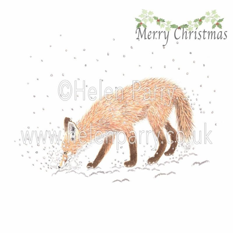 fox shovelling snow with snout